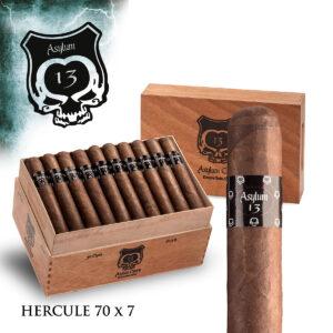 Eiroa - Nicaragua - Asylum 13 Hercule (Box of 20)