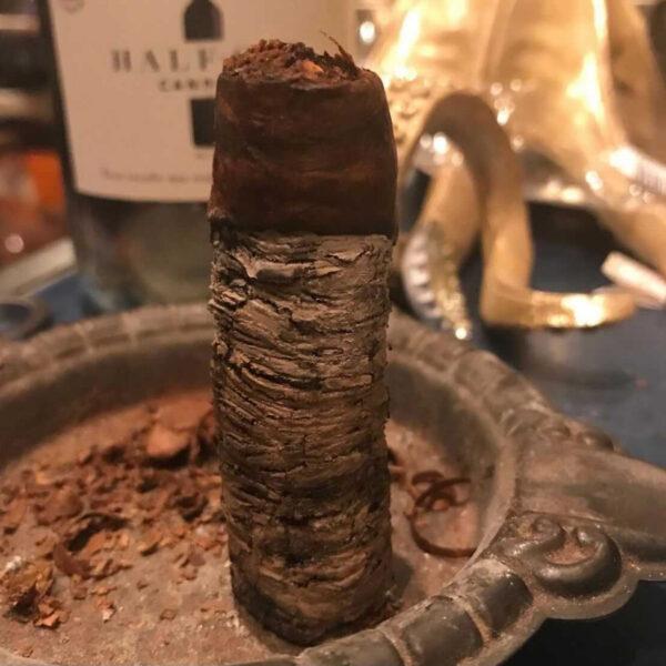 The Long Ash Challenge - 1 April 2021 at 6pm (UK)